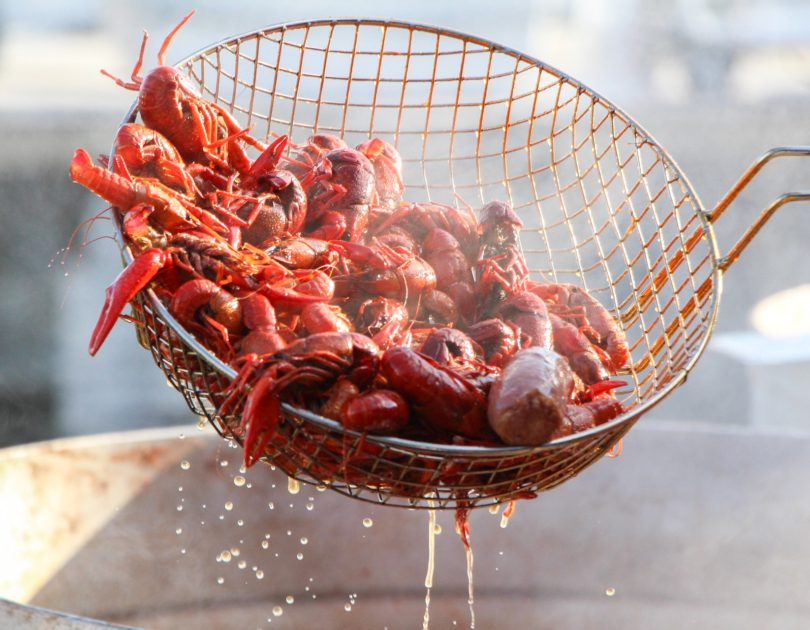 Crawfish: The Lobster of the South